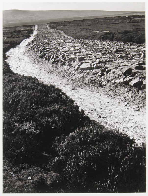 Wade's Causeway, Wheeldale Moor, East Yorkshire