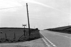 e023-galloway1980