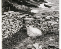 Slea Head, Dingle Peninsula, Ireland