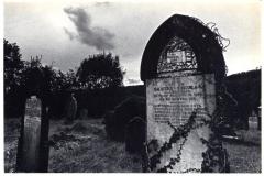 graveyard presceli
